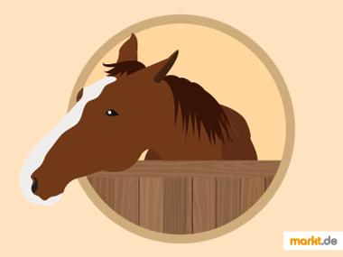 Grafik Pferd im Pferdestall