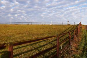 Weidefläche mit Holzzaun