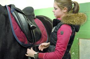 Bild junges Mädchen sattelt ein schwarzes Pferd