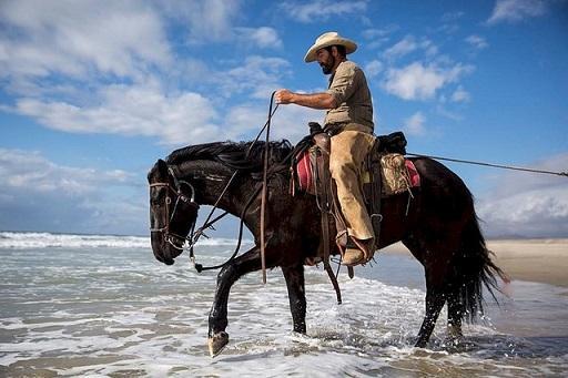 Bild Cowboy auf einem Pferd
