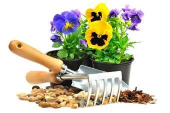 Bild Frühlingsblumen anpflanzen Werkzeug