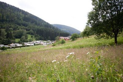 Bild Campingplatz Kleinenzhof