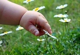 Kleinkind berührt eine Blume