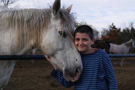 Reitbeteiligung Kind Jugendlicher Pferd Vorlage Vertrag