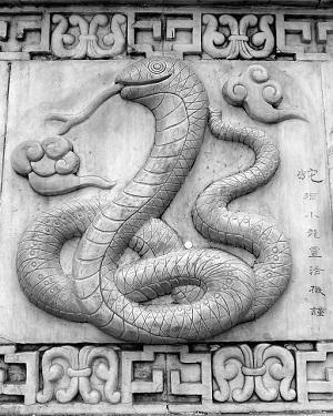 chinesisches horoskop 1989