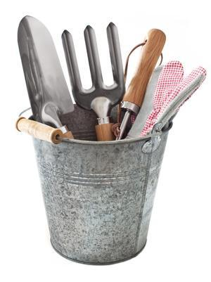 Bild Eimer mit Gartenwerkzeug