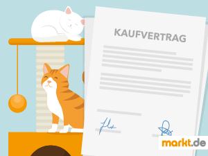 Grafik Kaufvertrag Katze