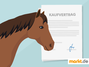 Grafik Kaufvertrag Pferd