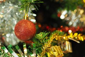 Bild Tannenbaum mit roter Glitzerkugel