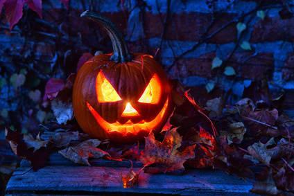 Bild von Halloween Kürbis