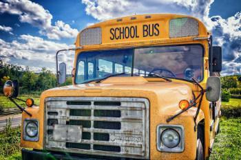 Bild Schulbus im amerikanischen Stil
