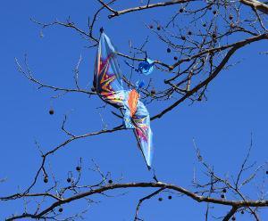 Bild Drache in Baum verfangen