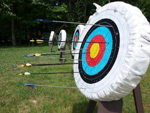 Bild Bogenschießen Zielscheibe