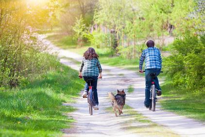 Bild Fahrradtour mit Hund