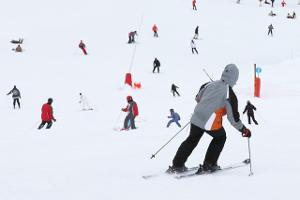 Bild Skifahrer beim Carving auf Piste