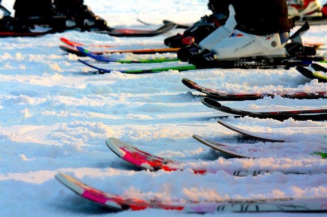 Bild Skier auf Piste