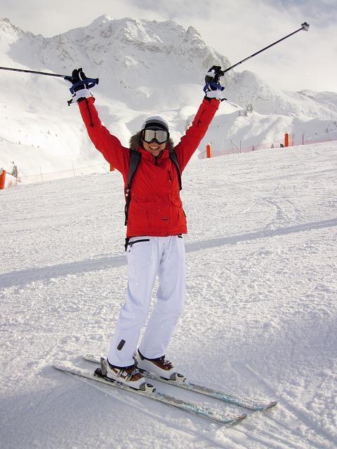 Bild Skifahrer