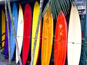 Viele Surfbretter aufgereiht