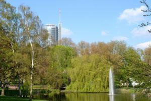 Bild Natur in Essen