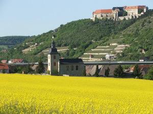 Bild Schloss Neuenburg