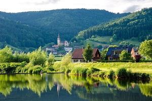 Bild Schwarzwald