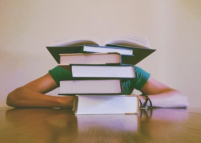 Bild Student hinter Bücherberg