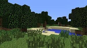 Bild Minecraft
