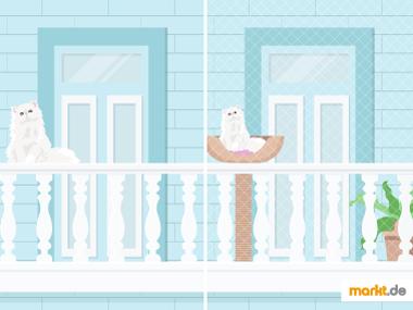 Balkonsicherung für Katzen