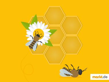 Grafik Bienensterben