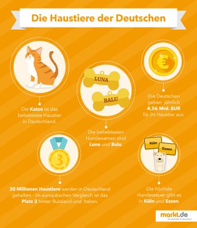 Infografik Beliebteste Haustiere in Deutschland