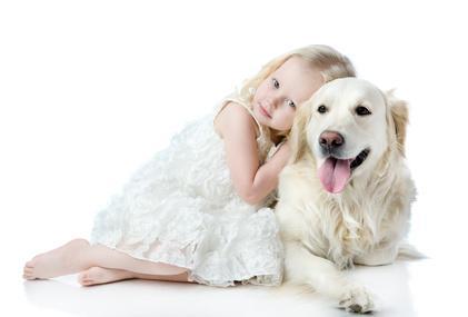 Labrador und Kind