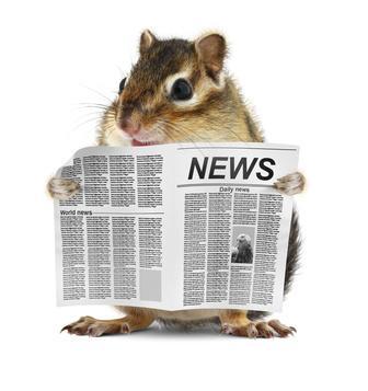 Maus liest Zeitung