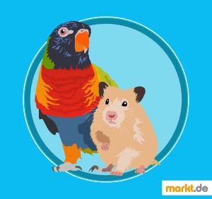 Bild Ziervogel und Hamster