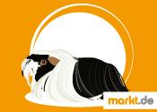Grafik Alpakameerschweinchen