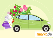 Auto fit für Frühling