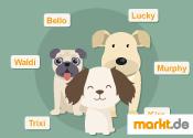 Grafik Hundenamen