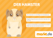 Hamsterhaltung