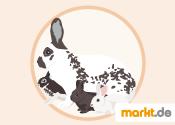 Grafik Kaninchenaufzucht