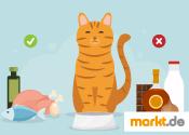 Grafik giftige Lebensmittel für Katzen