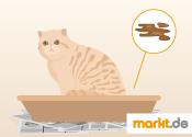 Grafik Katzendurchfall