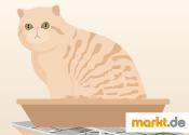 Grafik Katzenklo