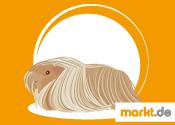 Grafik Peruaner Meerschweinchen