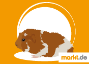 Grafik Rosettenmeerschweinchen