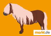 Grafik Shetland Pony