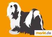 Grafik Tibet Terrier