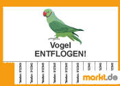 Grafik Vogel entflogen