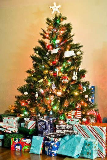 Wo Kommt Der Weihnachtsbaum Her.Der Weihnachtsbaum Wertvolle Tipps Und Infos Markt De