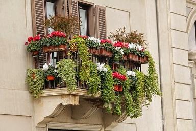 Bild Balkon mit Blumen