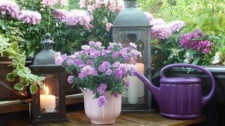 Bild Balkon mit Laterne und Blumen