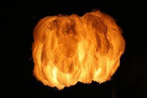 Bild Lampe aus Federn